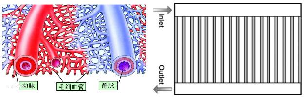 干货技术 | 燃料电池的骨骼和血管——双极板